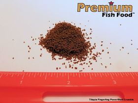 Tilapia PowerStart Fingerling Crumble 5 lbs